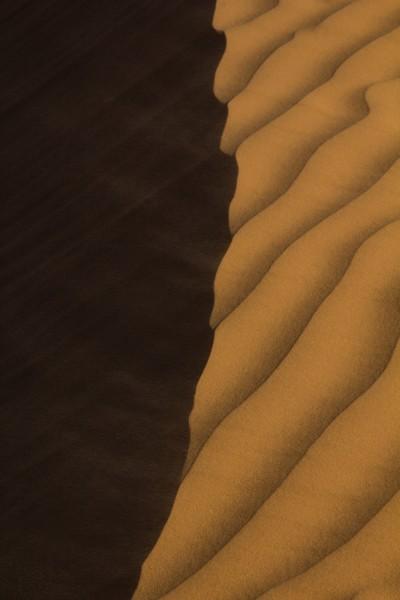 Dune ridge