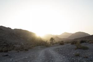 The Wadi Muwaydi (?)