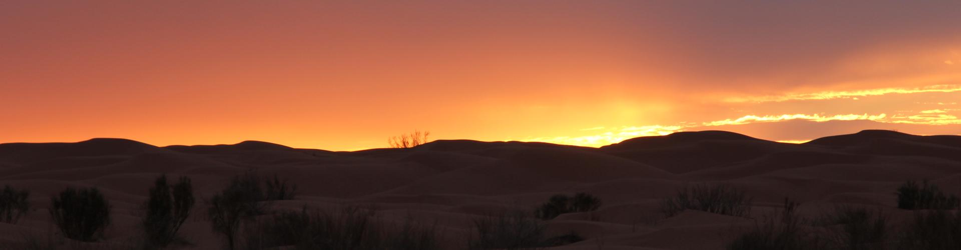 Permalink to: Desert trip in Tunesia